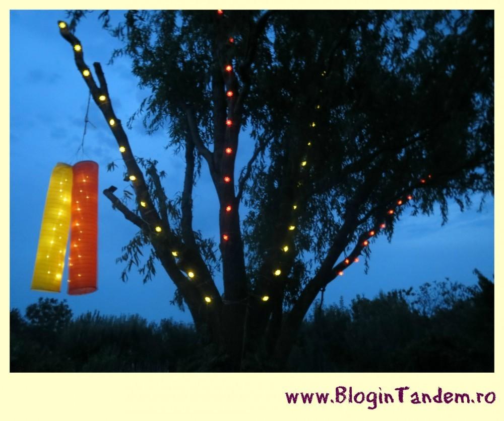 anii de aur_Blog in Tandem (4)