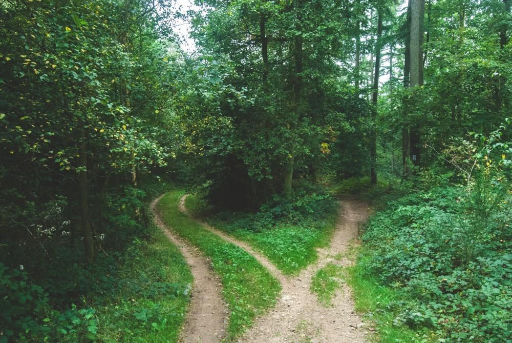Blog in Tandem_Abilitati 18 ani  (3)