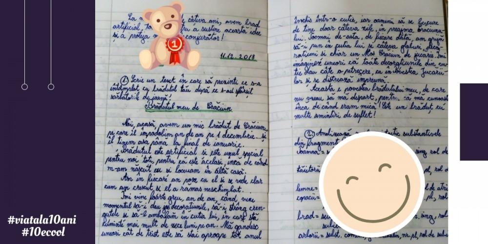 Bradutul_Blog in Tandem