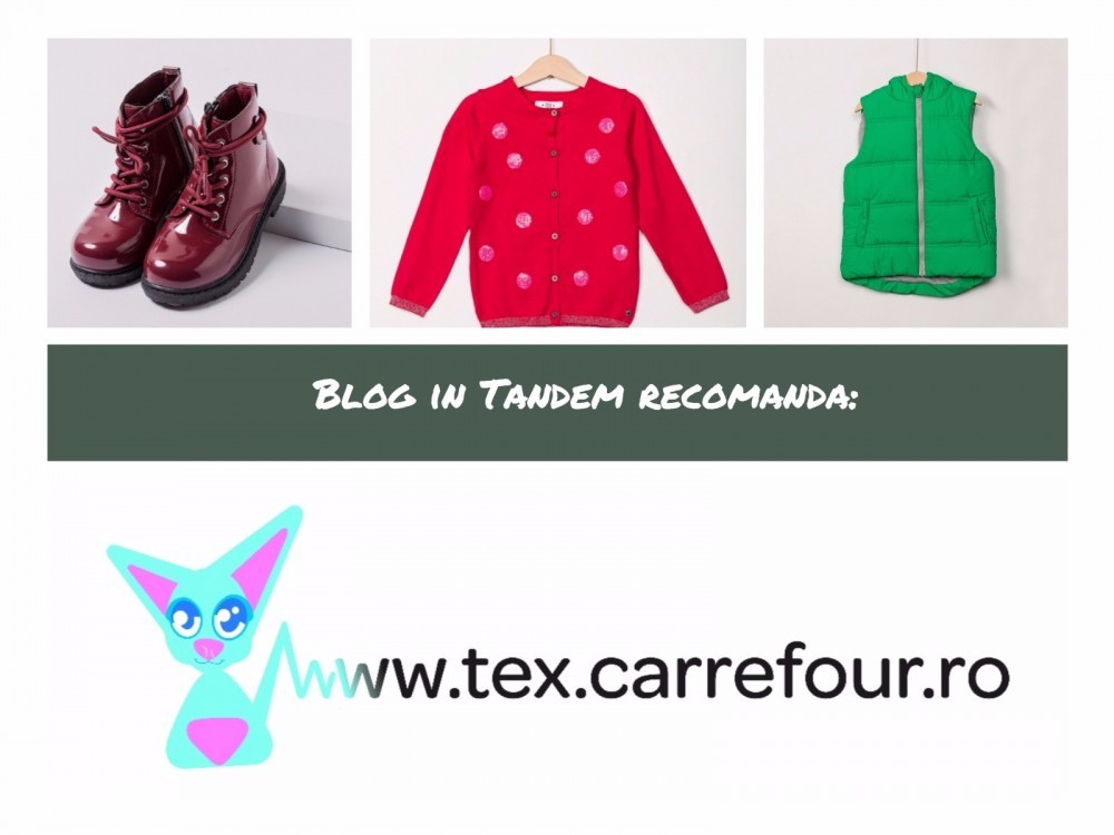 Tex Online_Blog in Tandem (1)