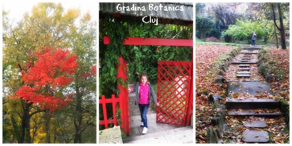 Gr Botanica CJ (1)