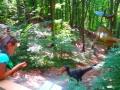 dino parc (18)