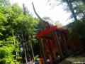 dino parc (2)