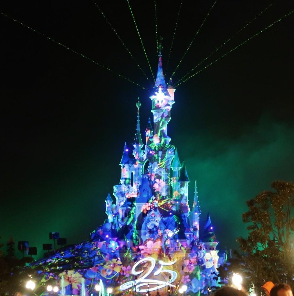 Disneyland_Blog in Tandem (4)