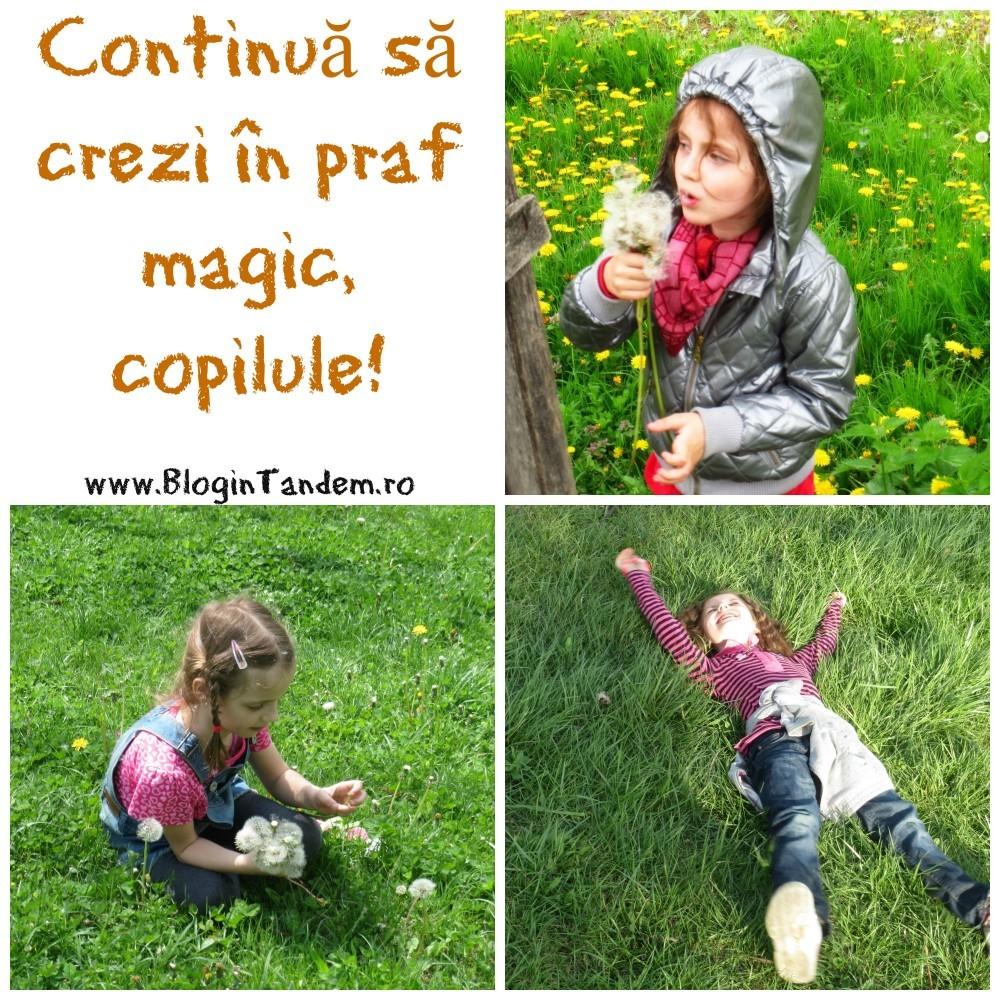 Continua copilule (1)