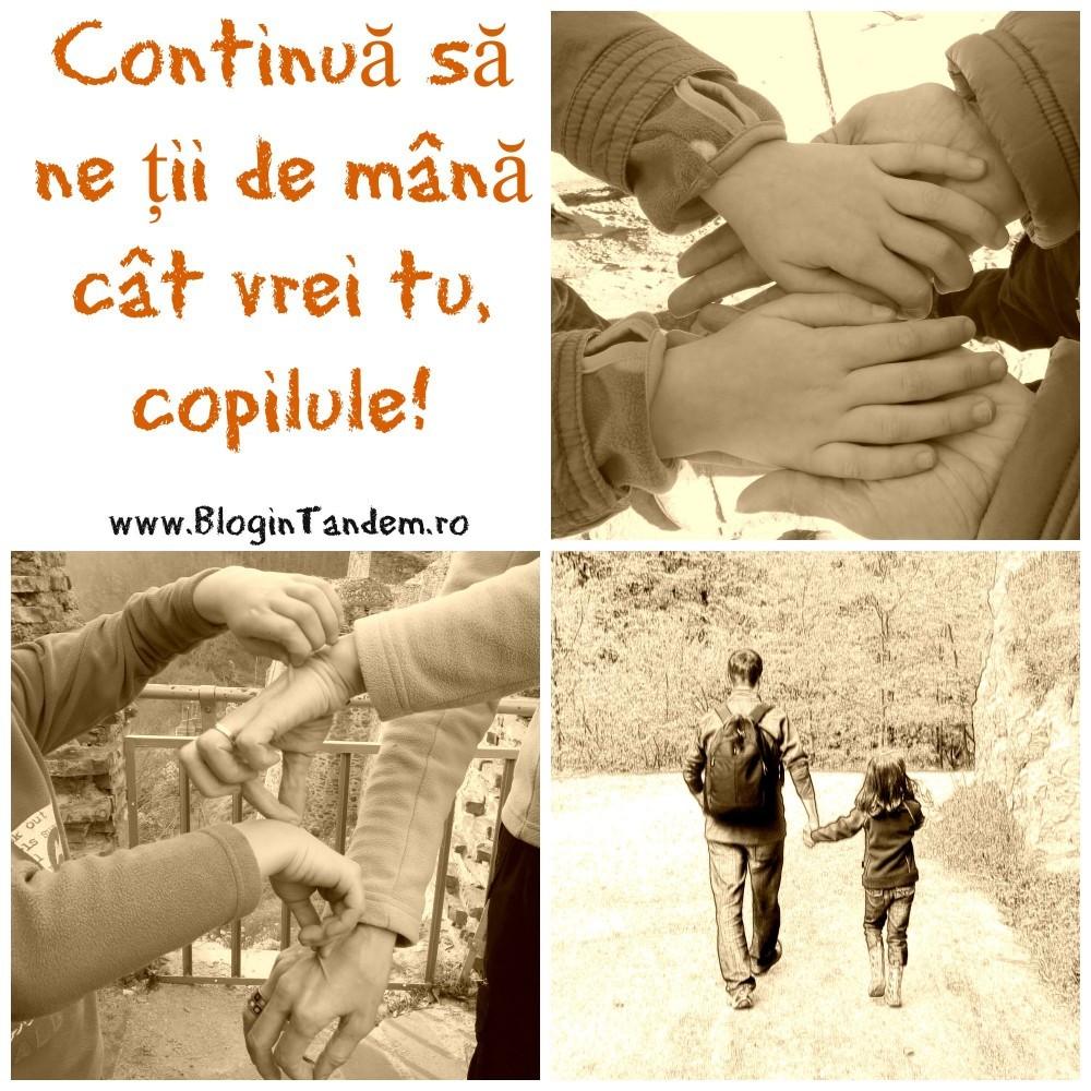 Continua copilule (5)
