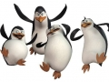 PinguinsDeMadagascar01