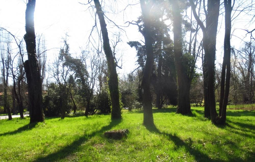 Gr Botanica Bucuresti (13).jpg