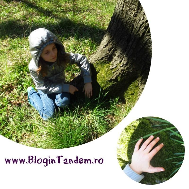 Gr Botanica Bucuresti (3).jpg