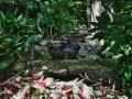 Colorful-Private-Garden-Retreat-7.jpg