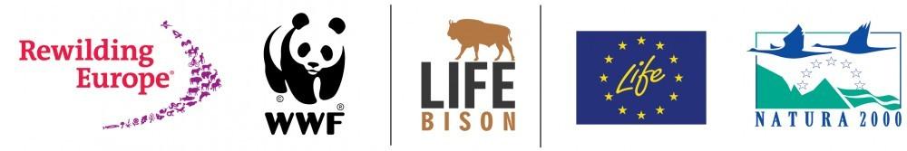 lock-up-logos-Life-Bison