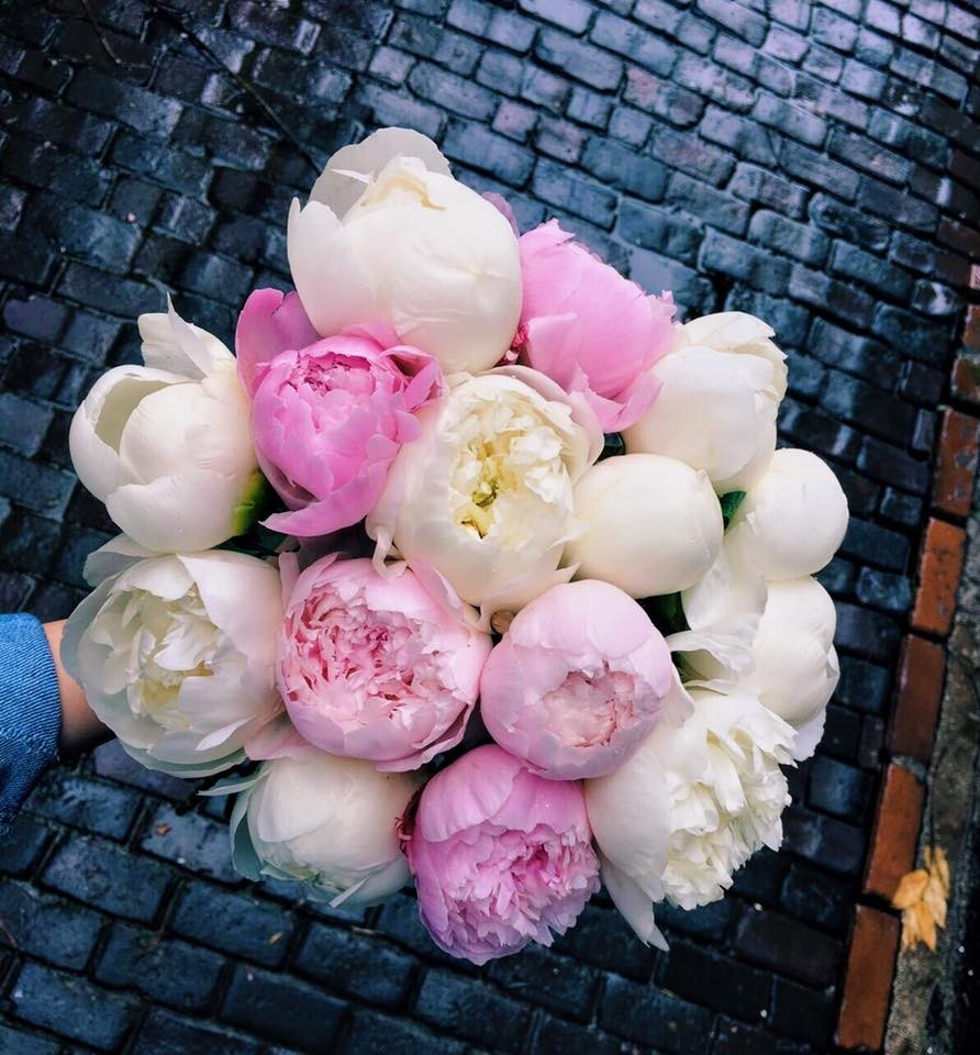 Florist (5)