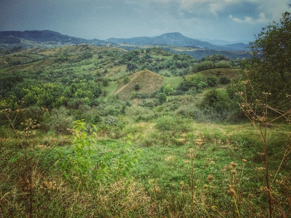 Blog in Tandem_odaile (14)