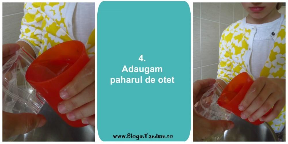 Blog in Tandem_Experim_4