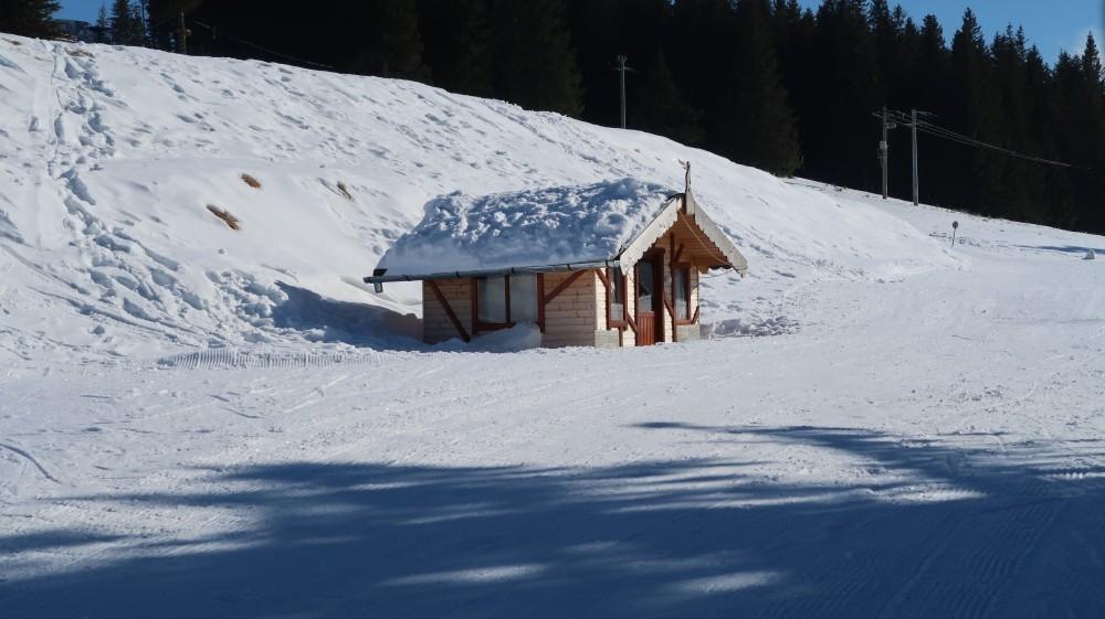 blog in tandem_paltinis schi (11)