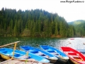 Lacul Rosu_1