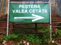 Pestera_11