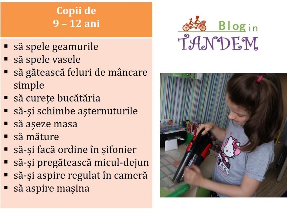 Blog in Tandem_Sarcini Copii (1)