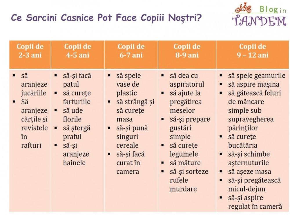 Blog in Tandem_Sarcini Copii (4)
