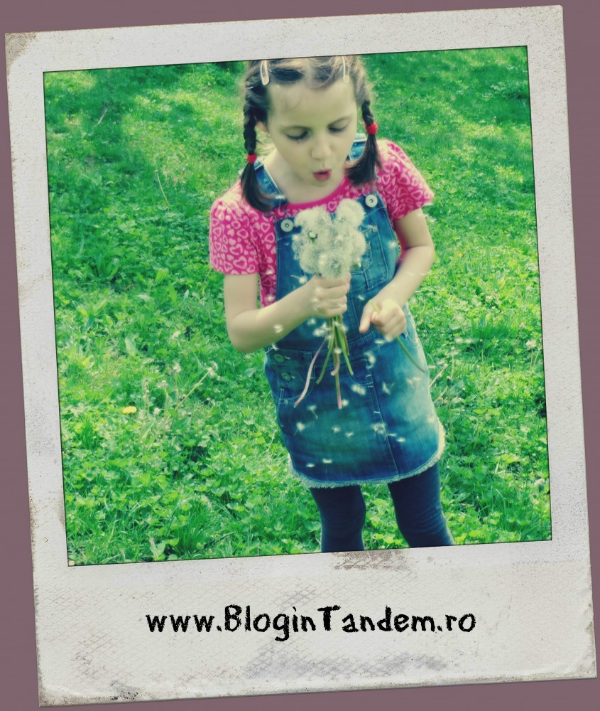 Semne bune (4)