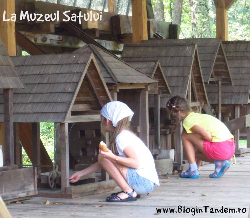 Sibiu_prin ochii emei (10)