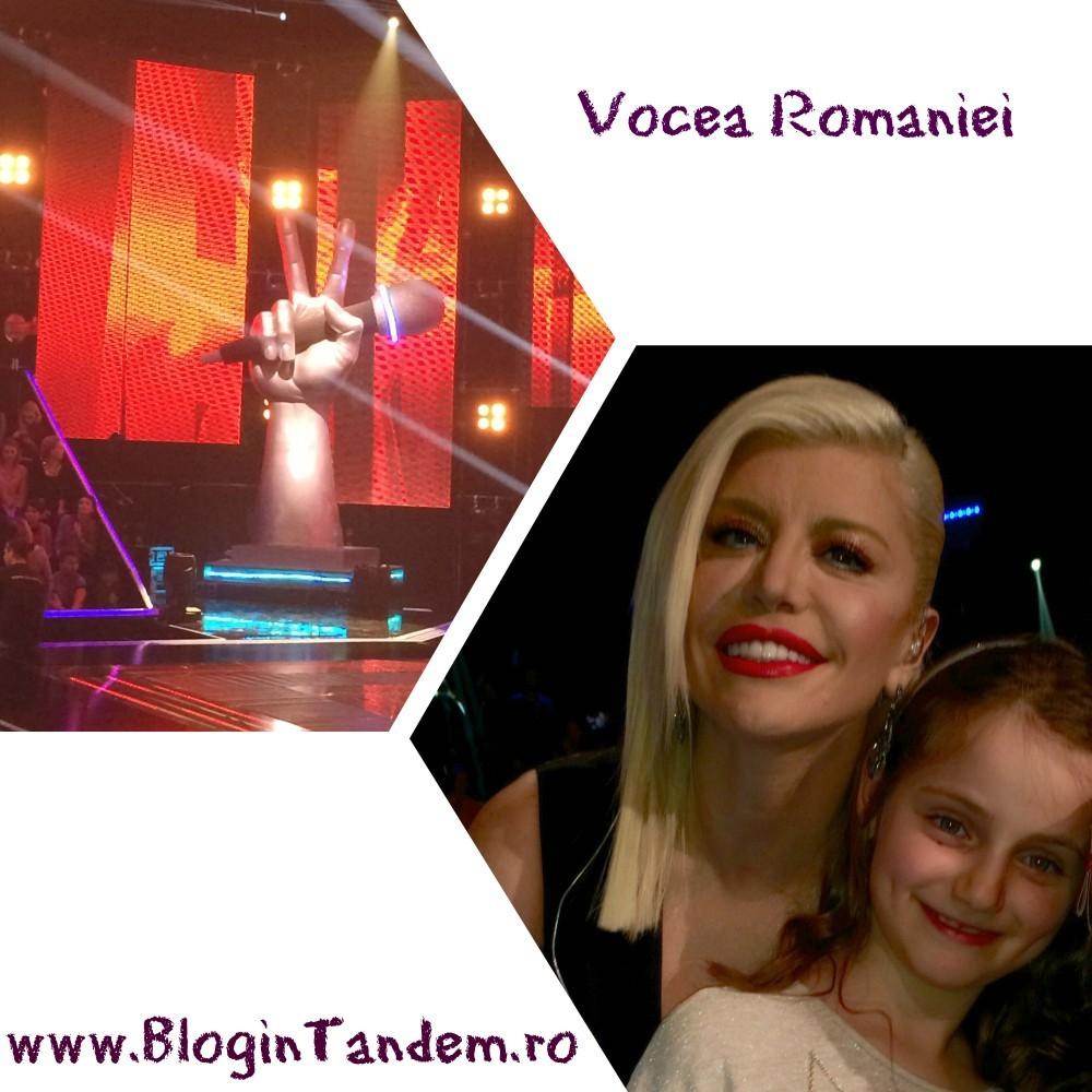 Vocea (16)