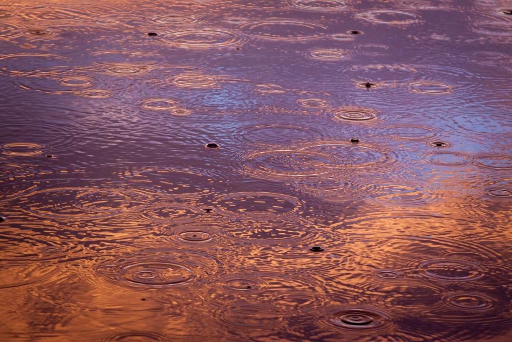o-frumoasa-zi-cu-ploaie-5