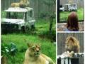 Zoo Ema 8