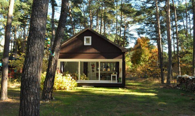 O casă de turtă dulce, în mijlocul pădurii