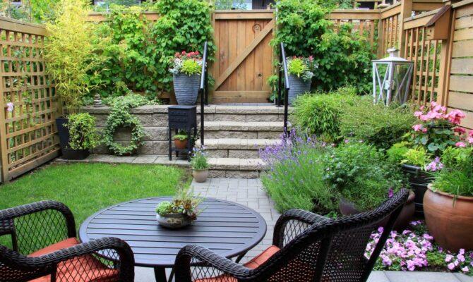 Ce nu trebuie să lipsească dintr-o grădină de vară?