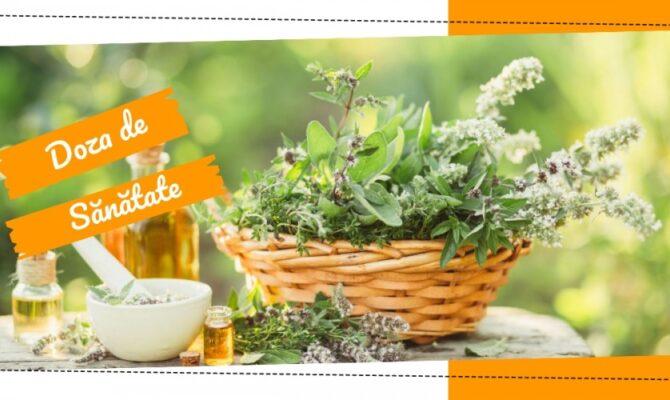 Doza de Sănătate -10 lucruri inedite, despre plantele medicinale
