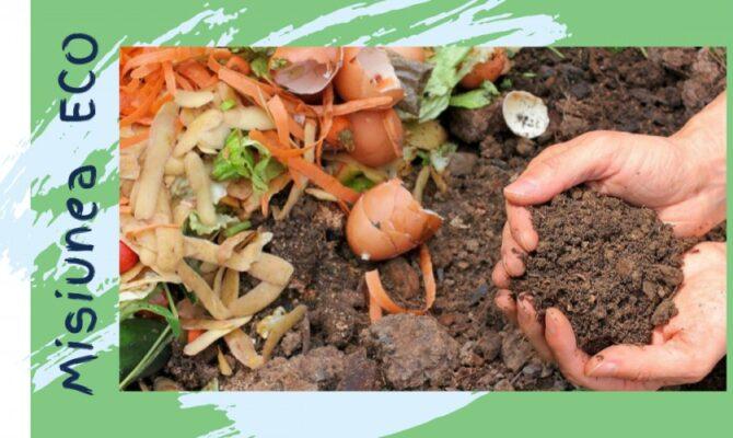 Misiunea ECO: Totul despre Compost