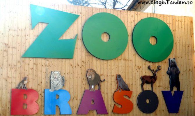 In vizita la Zoo Brasov