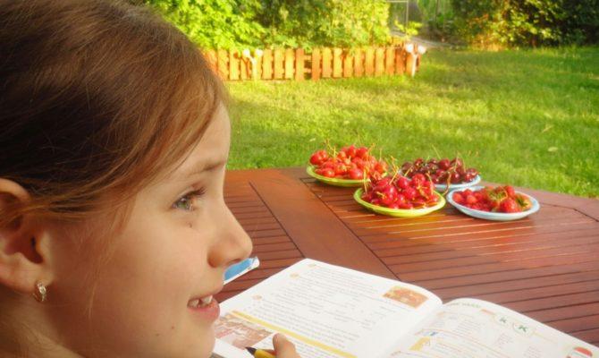 Studiul în timpul vacanțelor. Recomandat sau nu?